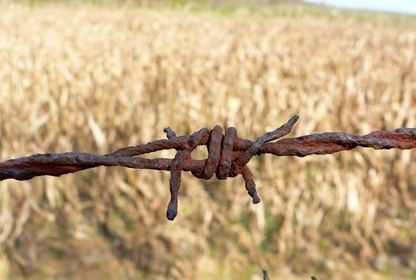 image of barbed wire in front of a field, symbolizes conflict,
